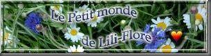 Liliflore
