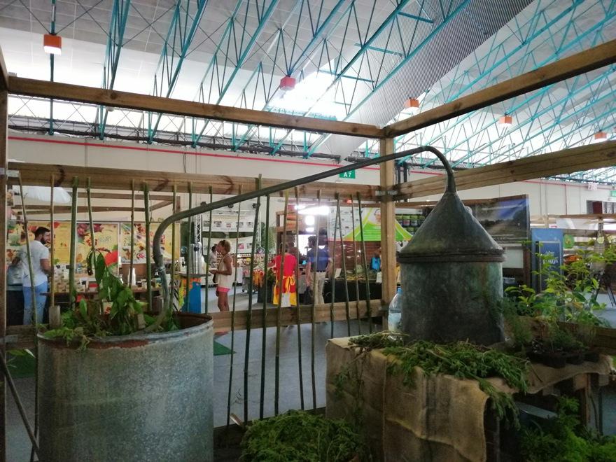 23/3/20 : La ferme en ville à St-Denis Réunion (1/5) -