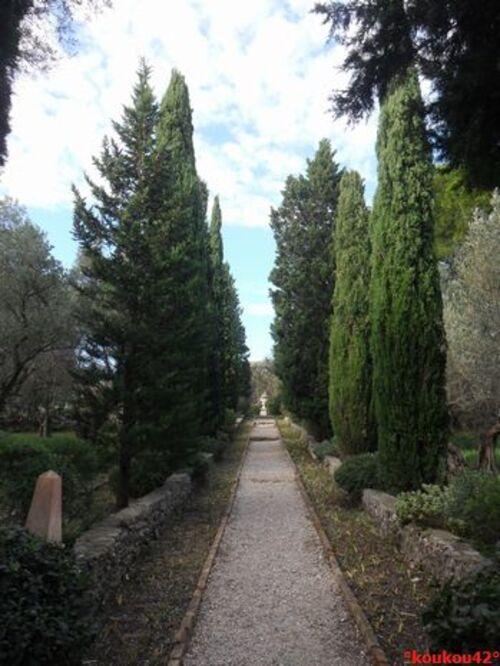 Echappée belle Avignonnaise. L'abbaye Saint-André. (fin)