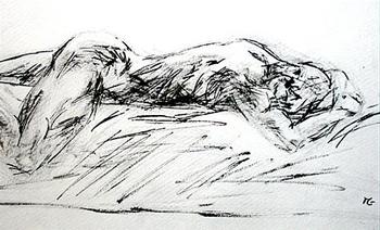 Brodagum-dessin-l-homme-endormi