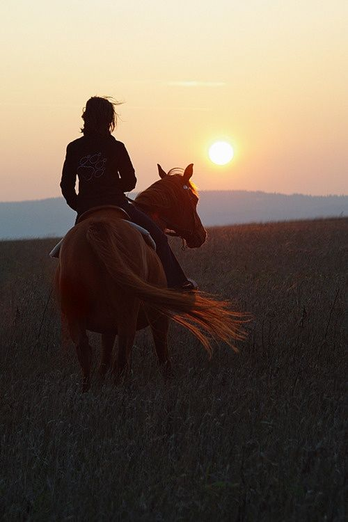 This would be me...just spending some quiet time with my horse.