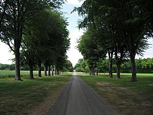 allee du chateau