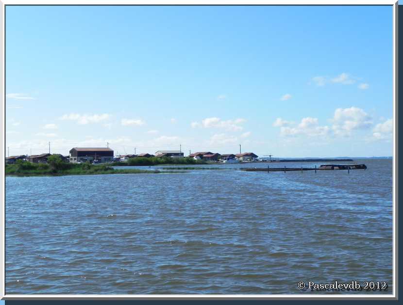 Gujan Mestras - Le port de Larros et la jetée du Christ - 2/3