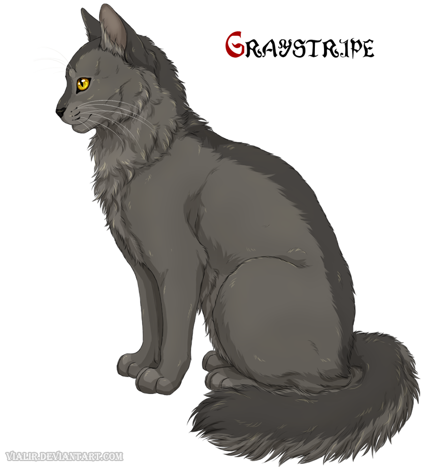Plume Grise - Graystripe - Warrior Cats Project