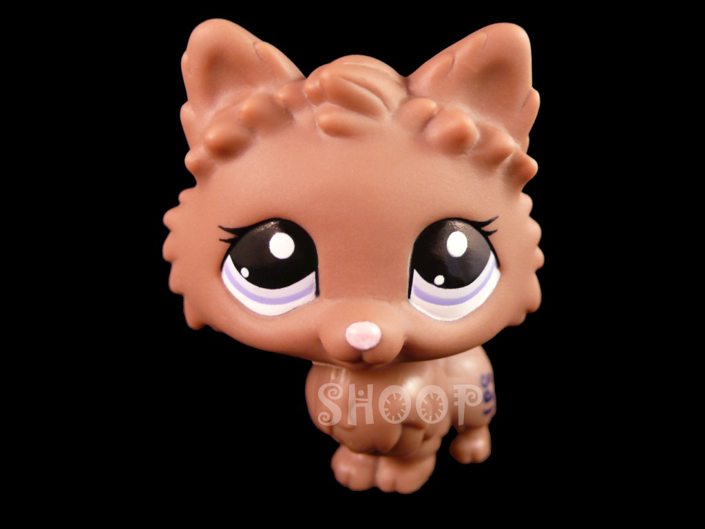 LPS 2449