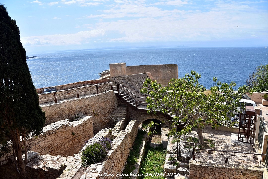 Bonifacio (7) Corse