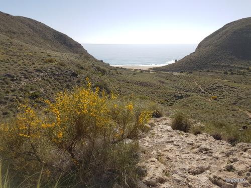 En repassant devant, un petit coup d'oeil sur la playa d'Enmedio
