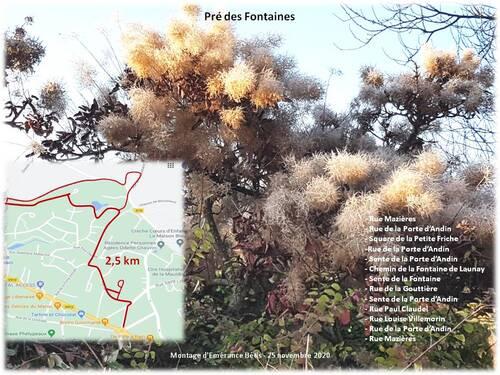 Flânerie de la Sainte Catherine : Pré des Fontaines