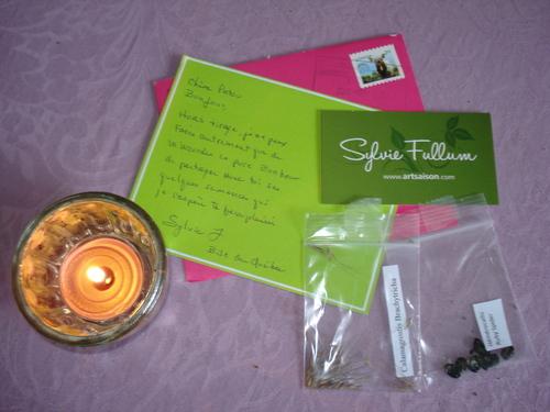 Seeds of love 2016 : les premières lettres