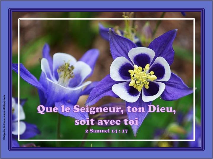 Que le Seigneur, ton Dieu, soit avec toi - 2 Samuel 14 : 17