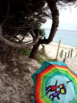 Corsica trip !