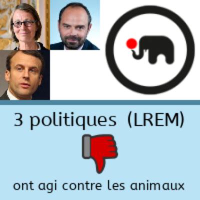 """500 000 € d'aides du Ministère de la culture aux cirques dits """"traditionnels"""", qui détiennent des animaux"""