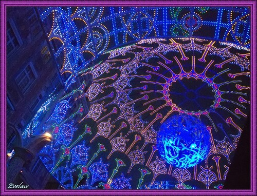LA DENTELLE STELLAIRE -  FANTASTIC 2012  pour http://ts2.mm.bing.net/th?id=I.4898333699278765&pid=15.1&W=160&H=122LILLE 3000