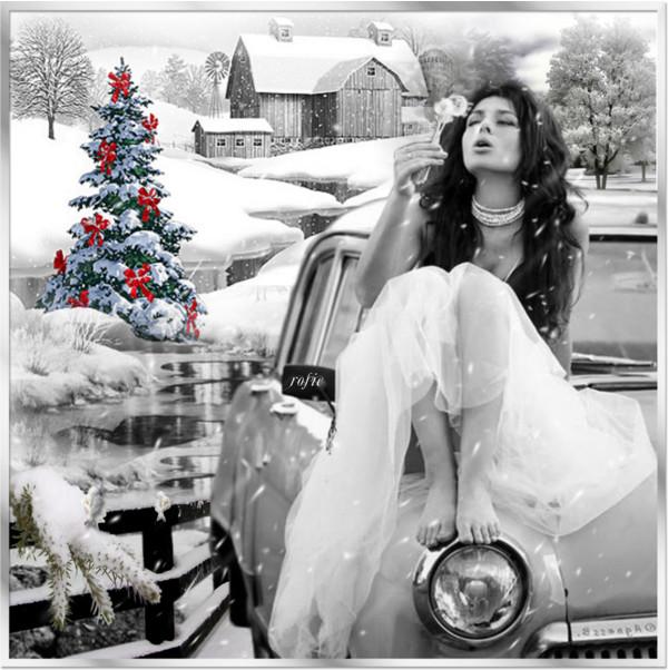 féerie d'hiver
