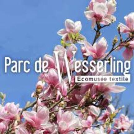 """Résultat de recherche d'images pour """"musée textile de wesserling"""""""