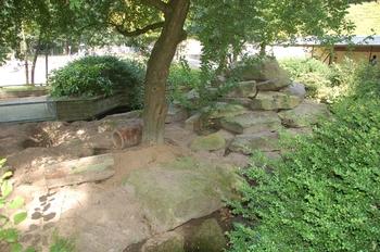 dierenpark emmen d50 038