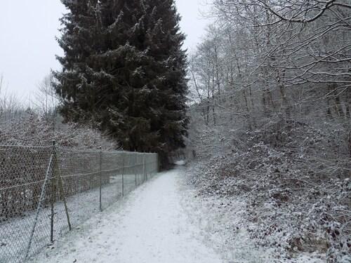 Quelques pas dans la neige