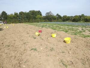 PDT : la récolte 2014 est à ch... !!!