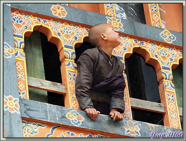 Blog de images-du-pays-des-ours : Images du Pays des Ours (et d'ailleurs ...), Un corbeau passe ... - Gangtey Gompa - Phobjika - Bhoutan