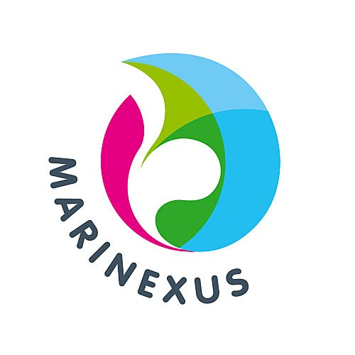 logo-marinexus