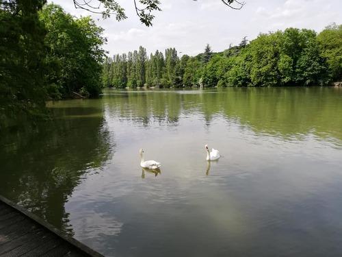 Déjeuner au bord de l'eau