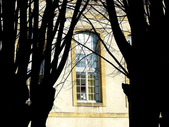 1 Photos Metz 7 Marc de Metz 2012