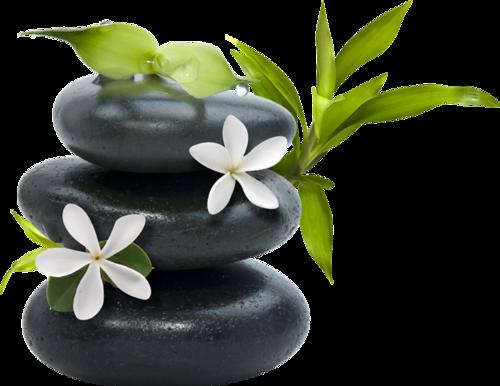 Zen ( restons zen )