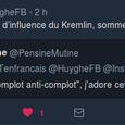 F.B. Huyghe - IRIS