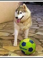 Jalya (3,5 ans)