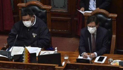 Bolivie: Les élections auront lieu le 2 août au plus tard (BolivarInfos-30/04/20)