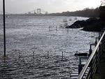 Rheinufer bei Hochwasser