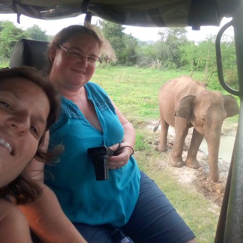 Vacances de la Toussaint... au chaud au Sri Lanka