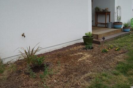 Une verrue en moins au jardin ?