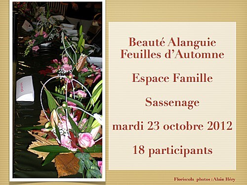 2012 10 23 beaute alanguie (2)