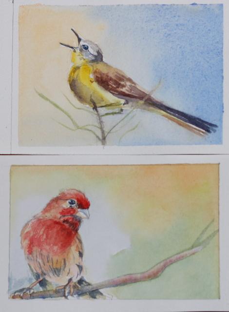 deux petits oiseaux