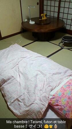 Echange scolaire au Japon - Jour 1