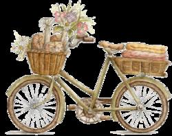 vintage transports