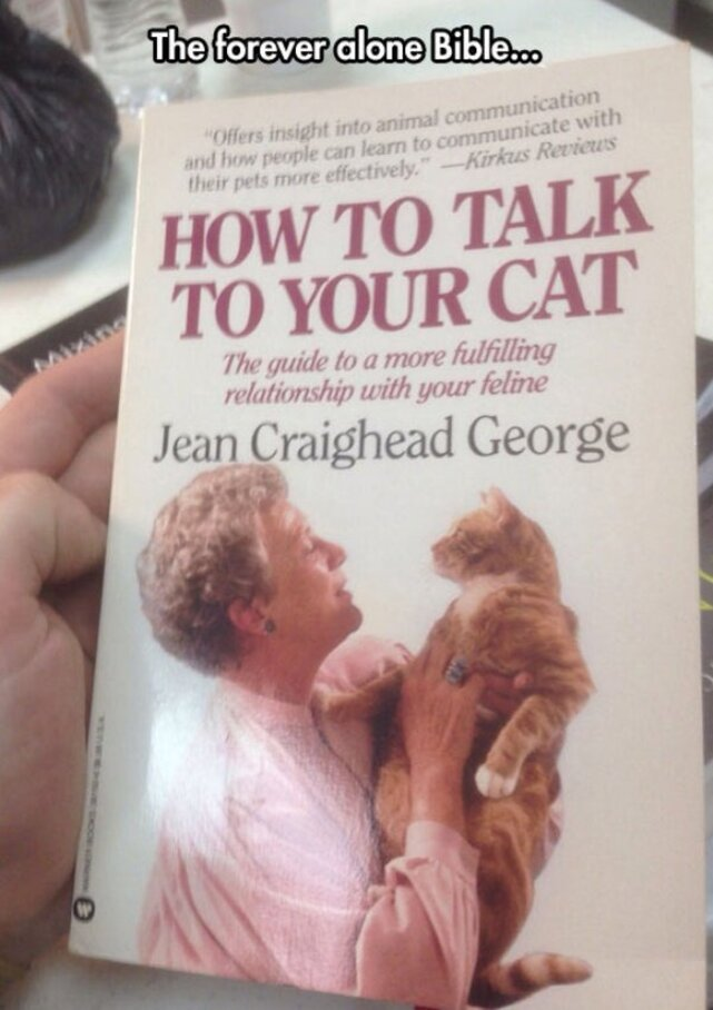 cool cat book talk old woman cover Dont be Forever Alone on a Friday! (30 Photos)