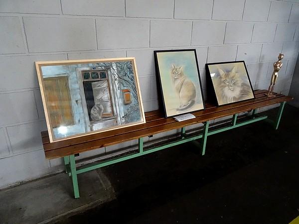 Une belle exposition féline à Laignes....