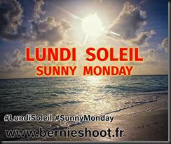 Le lundi au soleil