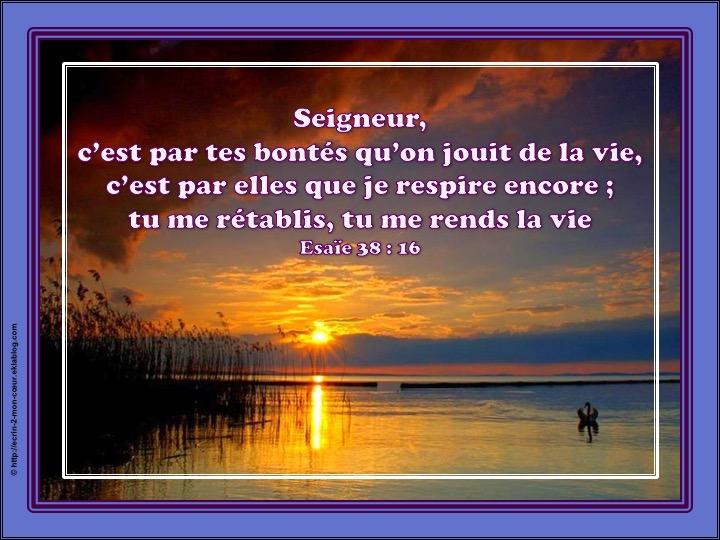 Tu me rends la vie - Esaïe 38 : 16