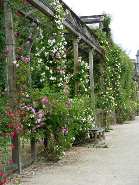 Les jardins du Chateau