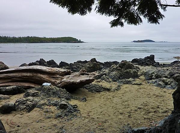 Jour 25 Tofino MacKenzie Beach 2