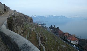 Vers Vevey et Montreux - Vignoble des Lavaux - Saint-Saphorin - Rochers de Naye