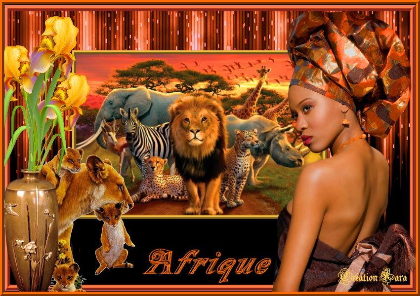 "Mes creas ""afrique"""