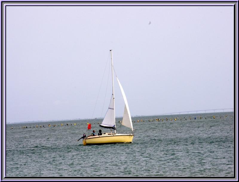 Dimanche 19 août après l'entraînement des cabots d'Oléron petite pause sur la plage de Boyardville