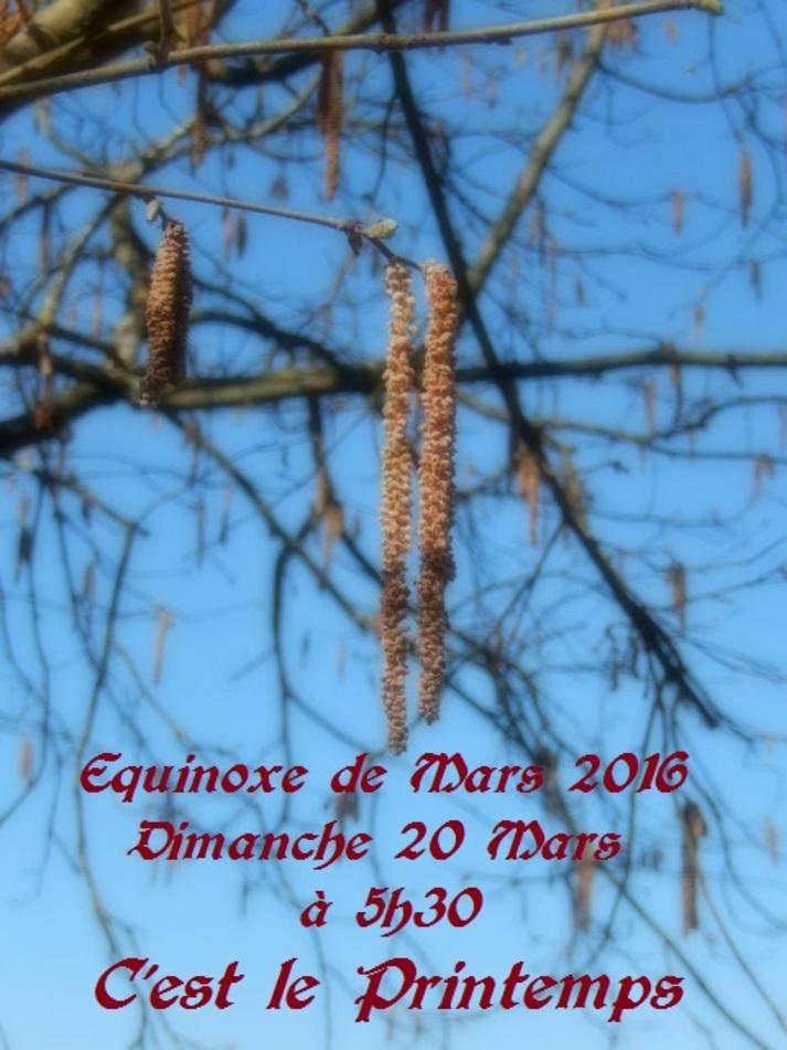 C'est le Printemps  aujourd'hui 20 Mars 2016, jour d'équinoxe