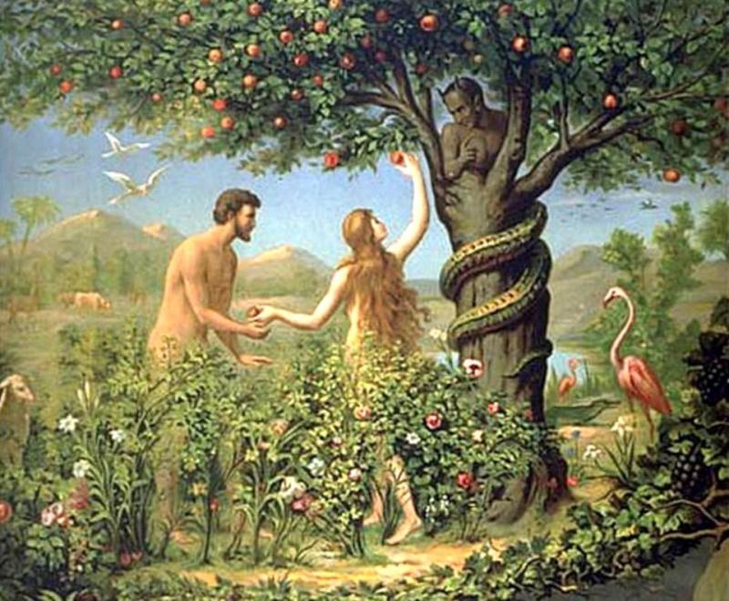 toi et moi au jardin deden claudie - Jardin D Eden