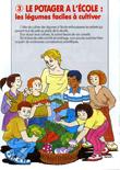 Jardifiche 3 : Le potager à l'école, les légumes faciles à cultiver