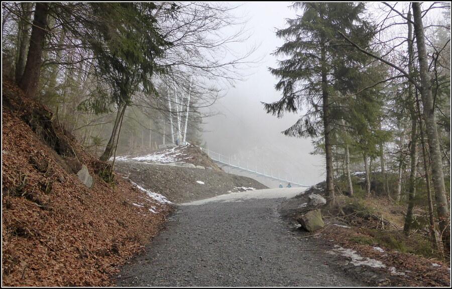 La passerelle himalayenne du Plateau d'Assy....